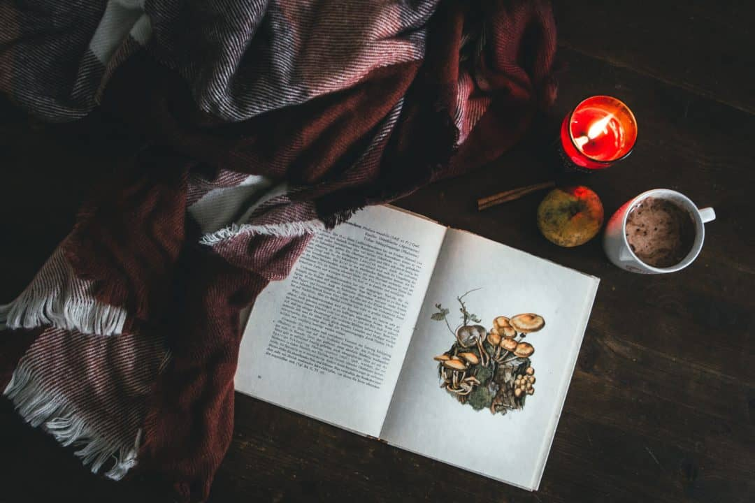 book blanket candle mug