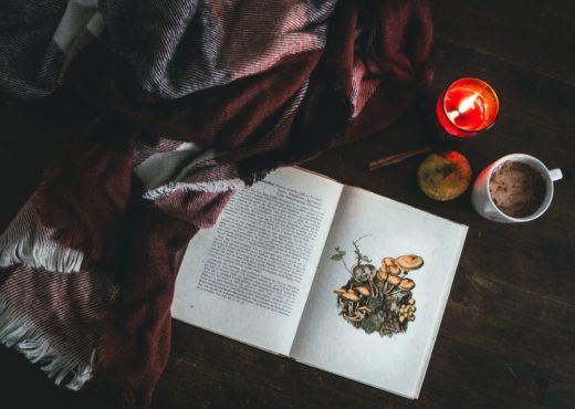 book blanket candle mug