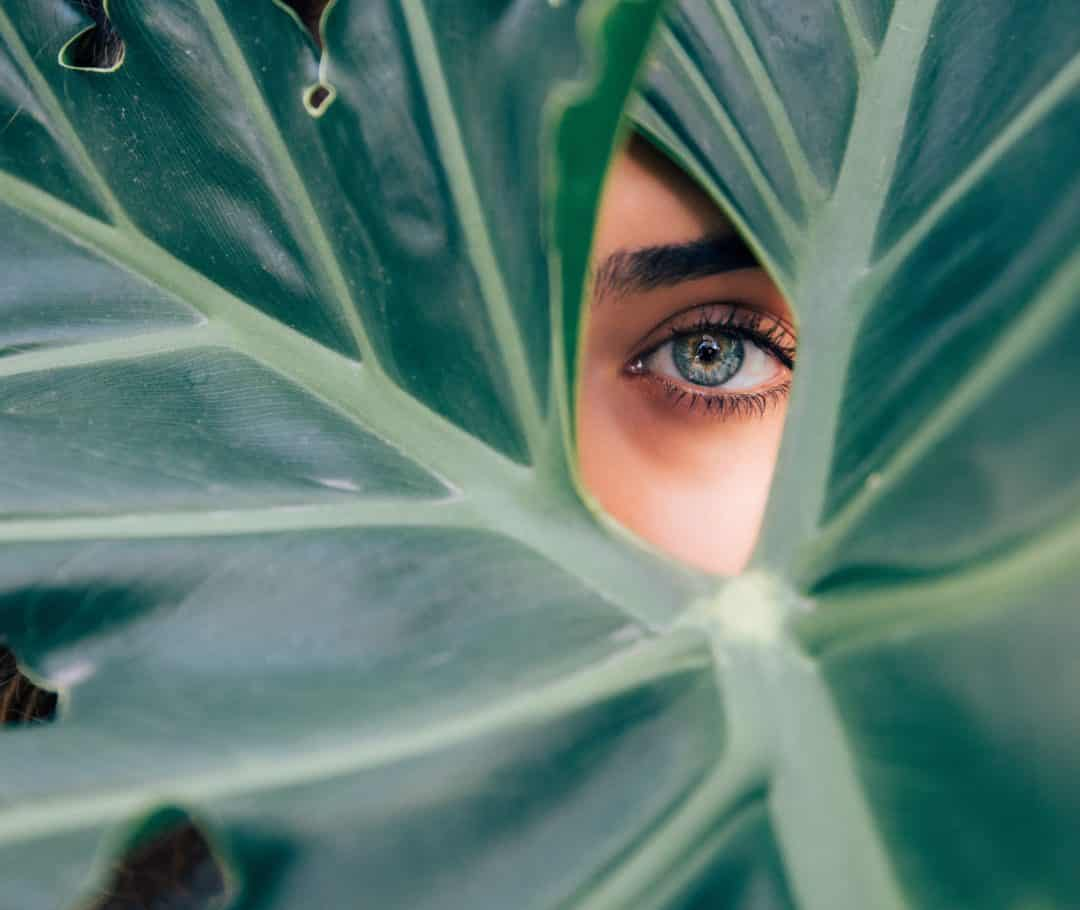 Woman's one eye peeking through large green leaf