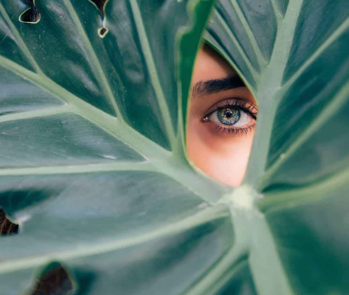 Woman's one eye peeking through large green leaf