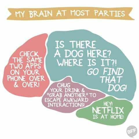 Funny meme: My Brain at most parties